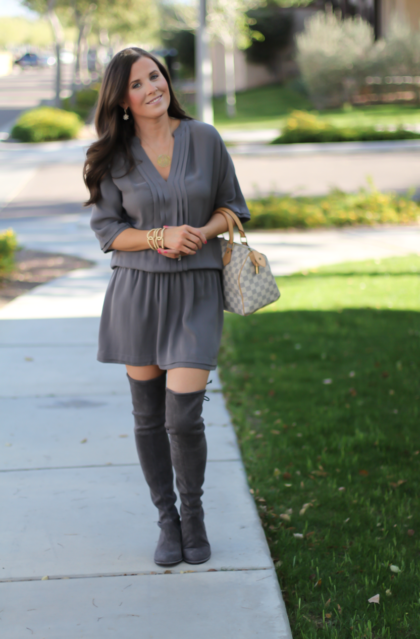 Grey Silk Dress, Grey Suede Over the Knee Boots, Grey and Ivory Bag, Joie, Stuart Weitzman, Louis Vuitton 2