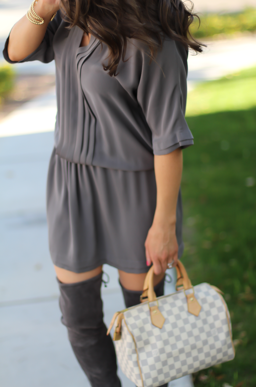 Grey Silk Dress, Grey Suede Over the Knee Boots, Grey and Ivory Bag, Joie, Stuart Weitzman, Louis Vuitton 6