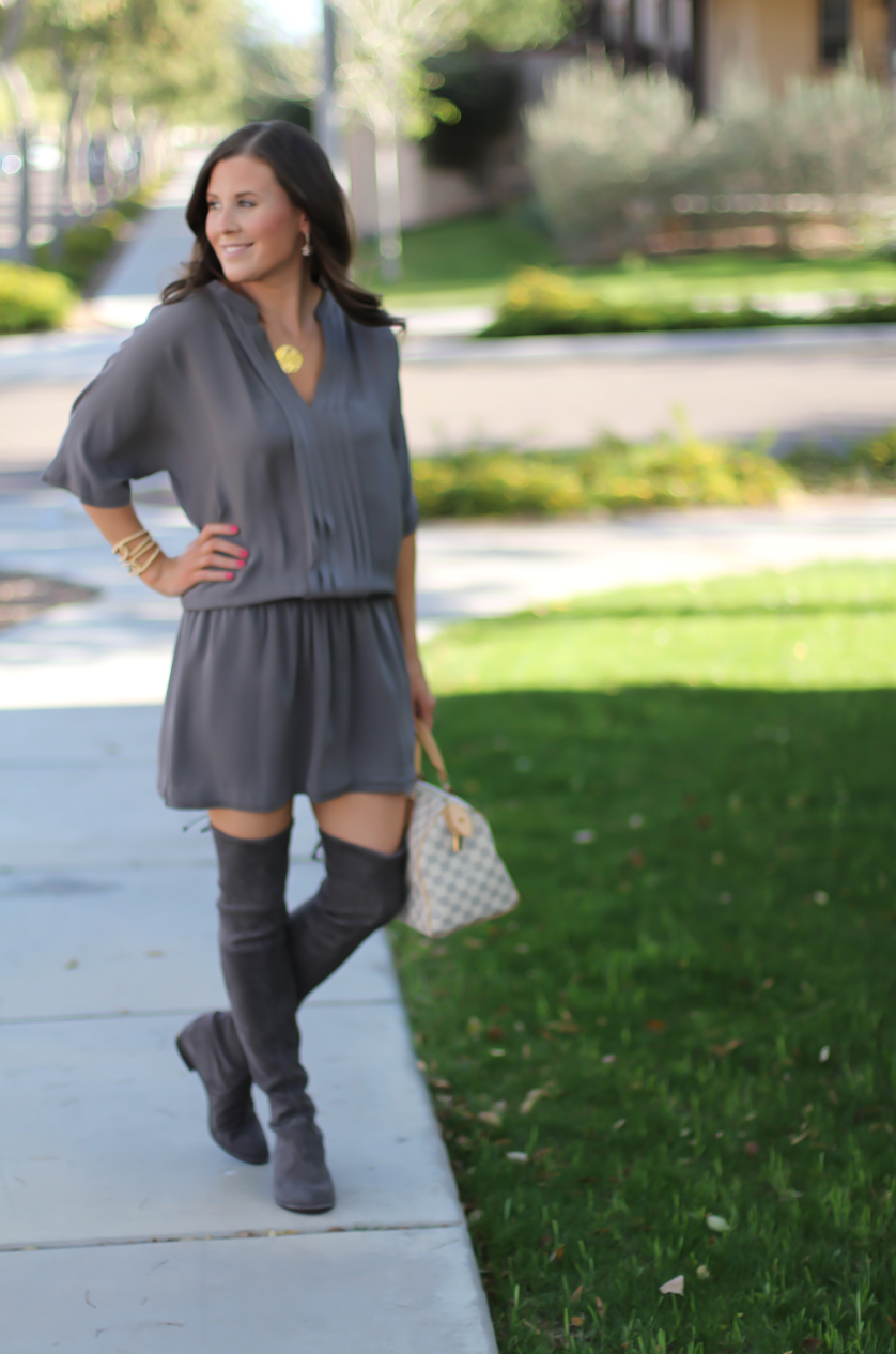 Grey Silk Dress, Grey Suede Over the Knee Boots, Grey and Ivory Bag, Joie, Stuart Weitzman, Louis Vuitton 8