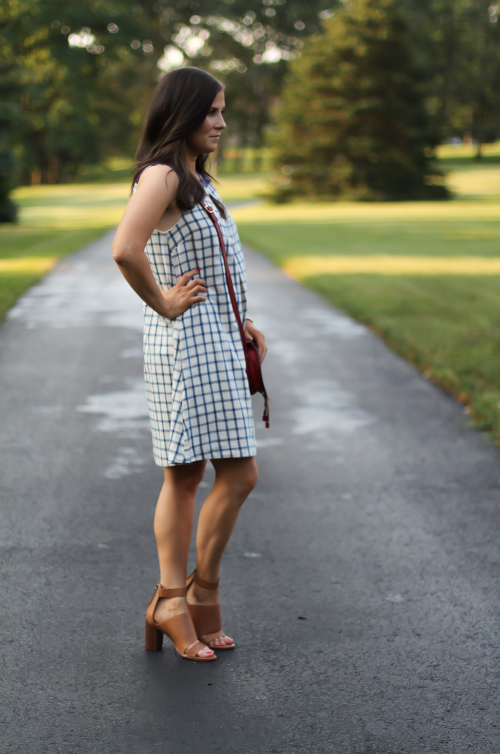 Blue Embroidered Plaid Dress, Red Saddlebag Crossbody, Tan Strap Sandals, Madewell, Chloe, Zimmermann 3